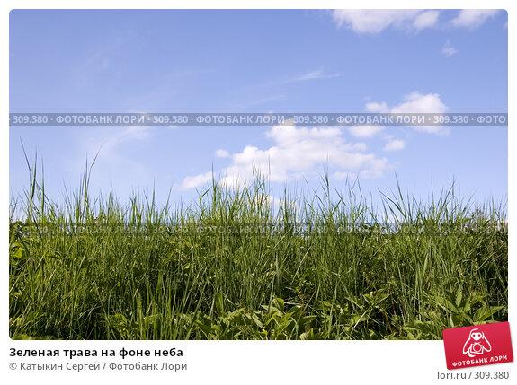 Зеленая трава на фоне неба, фото № 309380, снято 31 мая 2008 г. (c) Катыкин Сергей / Фотобанк Лори