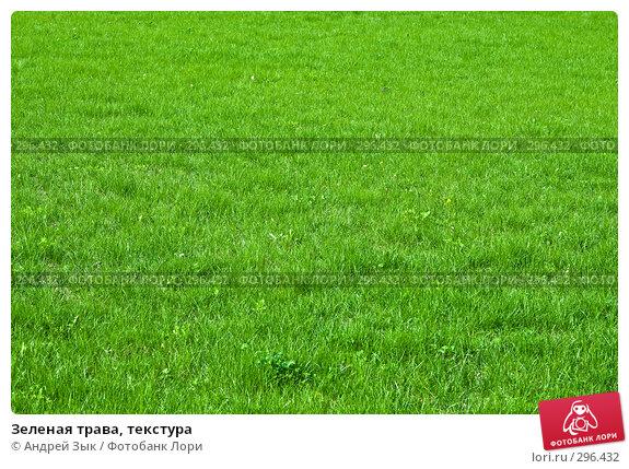Купить «Зеленая трава, текстура», фото № 296432, снято 2 мая 2007 г. (c) Андрей Зык / Фотобанк Лори