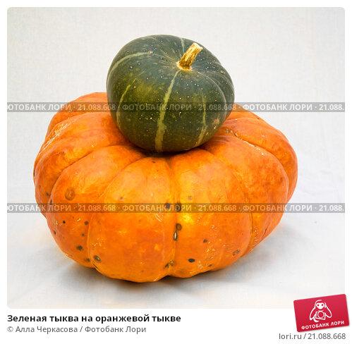 Зеленая тыква на оранжевой тыкве. Стоковое фото, фотограф Алла Черкасова / Фотобанк Лори
