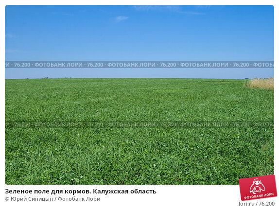 Зеленое поле для кормов. Калужская область, фото № 76200, снято 11 августа 2007 г. (c) Юрий Синицын / Фотобанк Лори