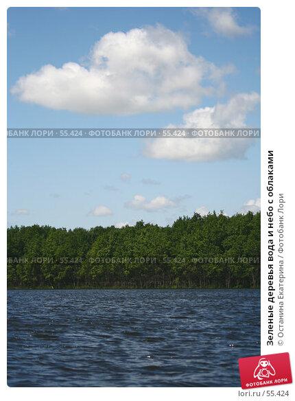 Зеленые деревья вода и небо с облаками, фото № 55424, снято 24 июня 2007 г. (c) Останина Екатерина / Фотобанк Лори
