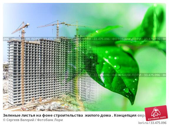 Зеленые листья на фоне строительства  жилого дома . Концепция охраны окружающей среды . Стоковое фото, фотограф Сергеев Валерий / Фотобанк Лори