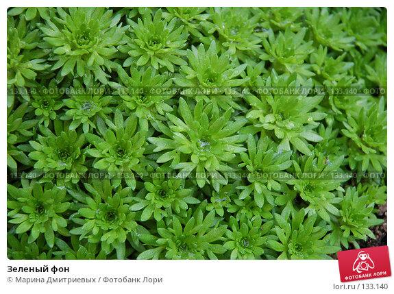 Зеленый фон, фото № 133140, снято 11 августа 2007 г. (c) Марина Дмитриевых / Фотобанк Лори
