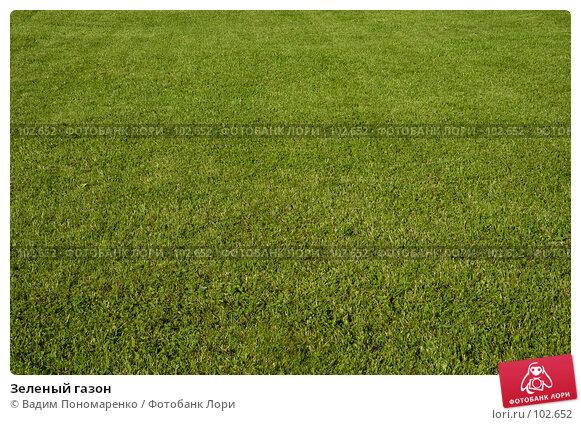 Купить «Зеленый газон», фото № 102652, снято 19 марта 2018 г. (c) Вадим Пономаренко / Фотобанк Лори
