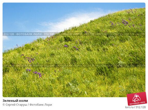 Зеленый холм, фото № 312128, снято 4 июня 2008 г. (c) Сергей Старуш / Фотобанк Лори