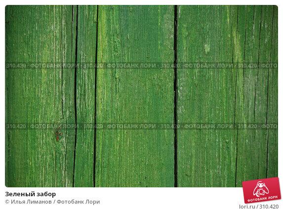 Купить «Зеленый забор», фото № 310420, снято 27 апреля 2008 г. (c) Илья Лиманов / Фотобанк Лори