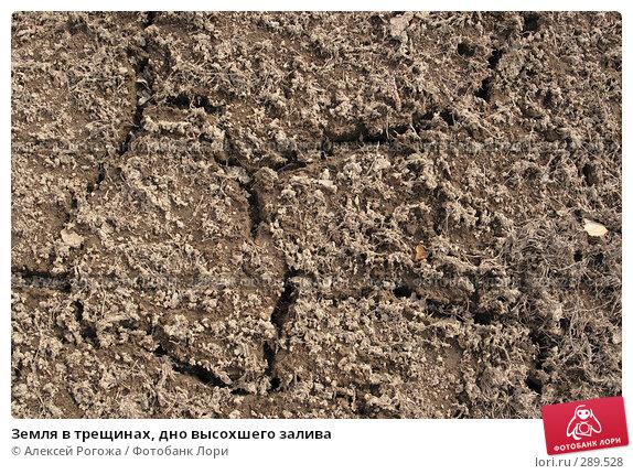 Купить «Земля в трещинах, дно высохшего залива», фото № 289528, снято 17 мая 2008 г. (c) Алексей Рогожа / Фотобанк Лори
