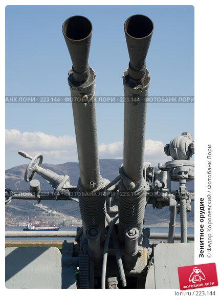 Купить «Зенитное орудие», фото № 223144, снято 12 марта 2008 г. (c) Федор Королевский / Фотобанк Лори