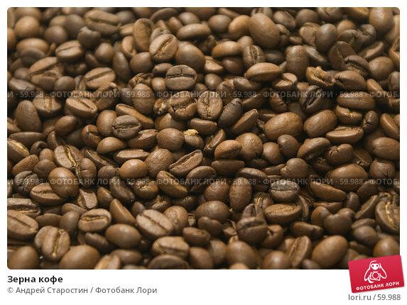 Зерна кофе, фото № 59988, снято 8 июля 2007 г. (c) Андрей Старостин / Фотобанк Лори