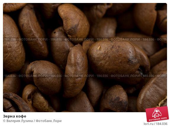 Зерна кофе, фото № 184036, снято 12 сентября 2007 г. (c) Валерия Потапова / Фотобанк Лори