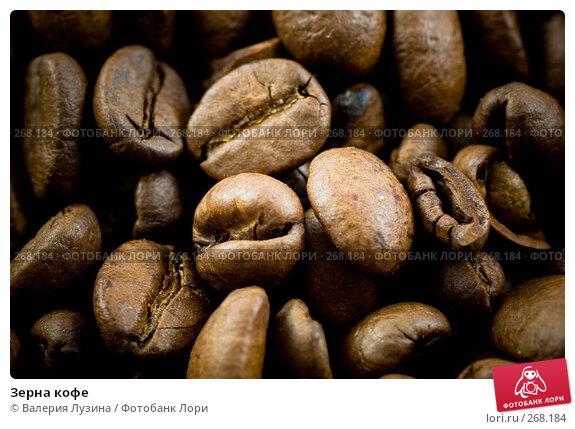 Купить «Зерна кофе», фото № 268184, снято 12 сентября 2007 г. (c) Валерия Потапова / Фотобанк Лори