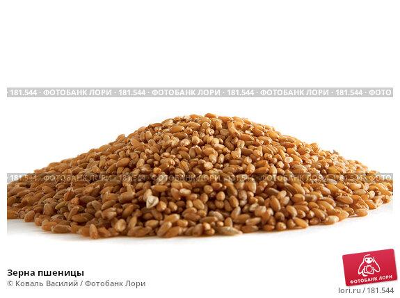 Зерна пшеницы, фото № 181544, снято 18 октября 2006 г. (c) Коваль Василий / Фотобанк Лори