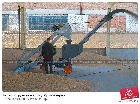Зернопогрузчик на току. Сушка зерна., фото № 205528, снято 6 сентября 2004 г. (c) Иван Сазыкин / Фотобанк Лори