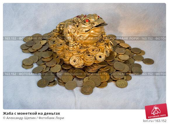 Жаба с монеткой на деньгах, эксклюзивное фото № 163152, снято 29 декабря 2007 г. (c) Александр Щепин / Фотобанк Лори