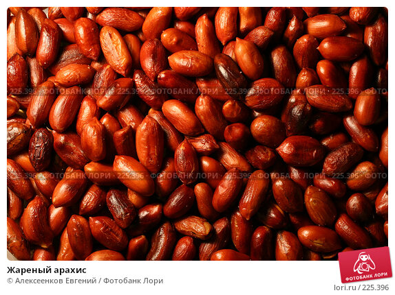 Жареный арахис, фото № 225396, снято 15 февраля 2008 г. (c) Алексеенков Евгений / Фотобанк Лори