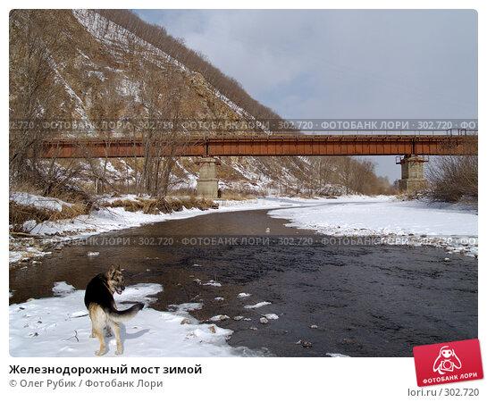 Купить «Железнодорожный мост зимой», фото № 302720, снято 16 февраля 2008 г. (c) Олег Рубик / Фотобанк Лори