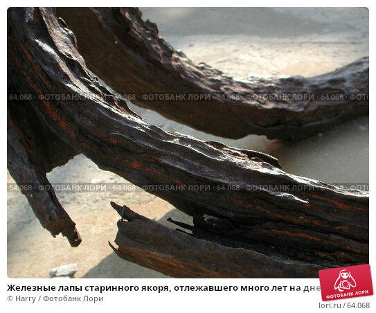 Железные лапы старинного якоря, отлежавшего много лет на дне моря. Болгария, фото № 64068, снято 2 мая 2004 г. (c) Harry / Фотобанк Лори