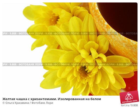 Желтая чашка с хризантемами. Изолированная на белом, фото № 9808, снято 29 июня 2006 г. (c) Ольга Красавина / Фотобанк Лори