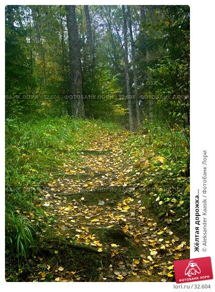 Жёлтая дорожка..., фото № 32604, снято 24 октября 2016 г. (c) Aleksander Kaasik / Фотобанк Лори