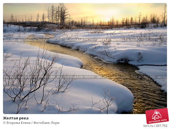 Желтая река, фото № 207752, снято 21 октября 2007 г. (c) Егорова Елена / Фотобанк Лори