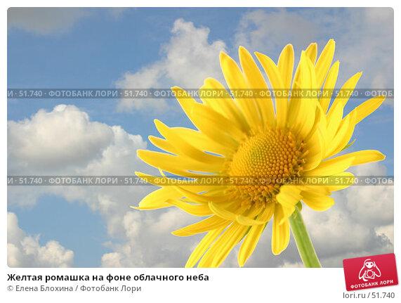 Желтая ромашка на фоне облачного неба, фото № 51740, снято 24 апреля 2007 г. (c) Елена Блохина / Фотобанк Лори