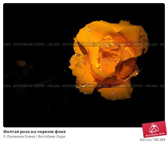 Желтая роза на черном фоне, фото № 140264, снято 8 марта 2005 г. (c) Логинова Елена / Фотобанк Лори