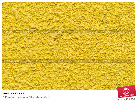 Купить «Желтая стена», фото № 179856, снято 12 августа 2007 г. (c) Ирина Игумнова / Фотобанк Лори