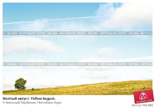 Желтый август. Yellow August., фото № 182884, снято 2 сентября 2007 г. (c) Анатолий Теребенин / Фотобанк Лори