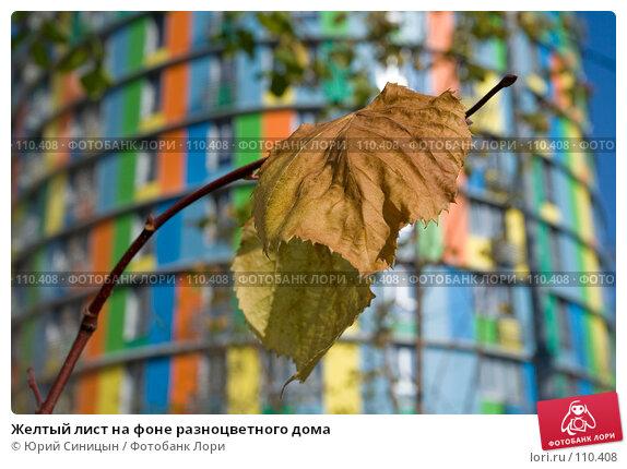 Желтый лист на фоне разноцветного дома, фото № 110408, снято 26 сентября 2007 г. (c) Юрий Синицын / Фотобанк Лори