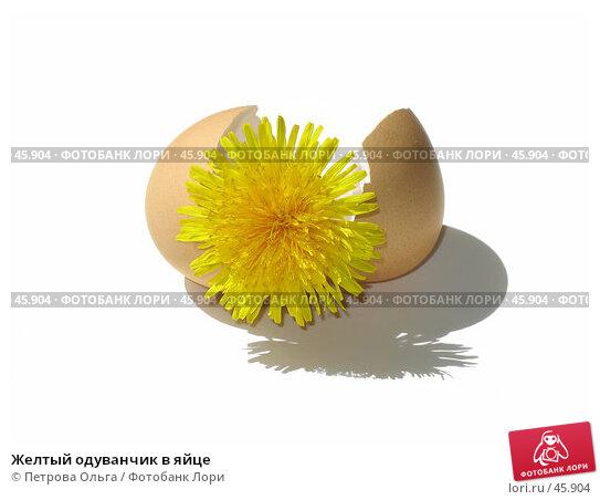 Желтый одуванчик в яйце, фото № 45904, снято 17 мая 2007 г. (c) Петрова Ольга / Фотобанк Лори