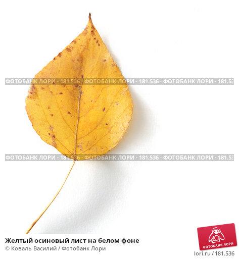 Желтый осиновый лист на белом фоне, фото № 181536, снято 18 октября 2006 г. (c) Коваль Василий / Фотобанк Лори