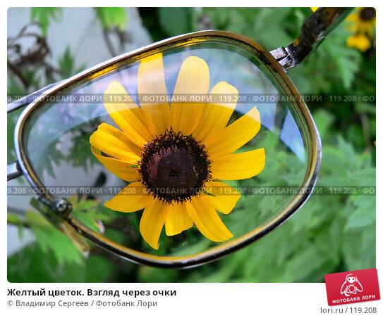 Желтый цветок. Взгляд через очки, фото № 119208, снято 25 июля 2017 г. (c) Владимир Сергеев / Фотобанк Лори
