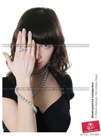 Жемчужное ожерелье, фото № 210888, снято 23 января 2008 г. (c) Efanov Aleksey / Фотобанк Лори