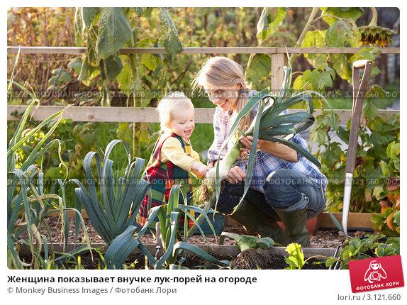 Купить «Женщина показывает внучке лук-порей на огороде», фото № 3121660, снято 12 октября 2010 г. (c) Monkey Business Images / Фотобанк Лори