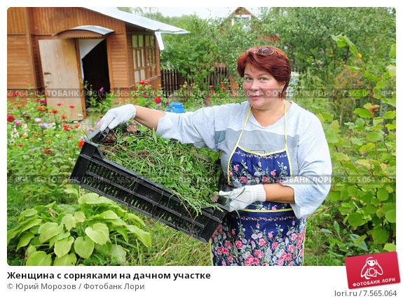 Женщина с сорняками на дачном участке, эксклюзивное фото № 7565064, снято 11 сентября 2010 г. (c) Юрий Морозов / Фотобанк Лори