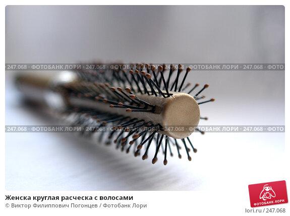 Женска круглая расческа с волосами, фото № 247068, снято 2 октября 2004 г. (c) Виктор Филиппович Погонцев / Фотобанк Лори
