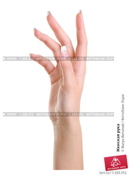 Пальчики женщин белоснежные нежные