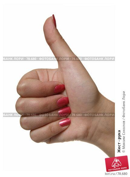 Купить «Жест - рука», фото № 78680, снято 30 июля 2007 г. (c) Максим Соколов / Фотобанк Лори