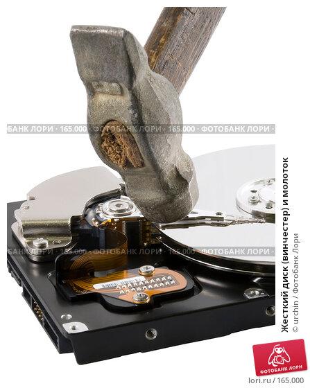 Жесткий диск (винчестер) и молоток, фото № 165000, снято 27 декабря 2007 г. (c) urchin / Фотобанк Лори