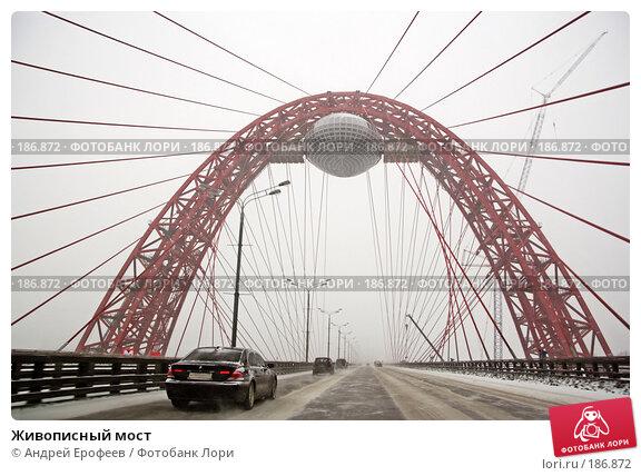 Живописный мост, фото № 186872, снято 25 января 2008 г. (c) Андрей Ерофеев / Фотобанк Лори