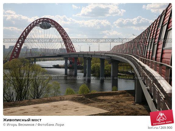 Живописный мост, фото № 269900, снято 26 апреля 2008 г. (c) Игорь Веснинов / Фотобанк Лори
