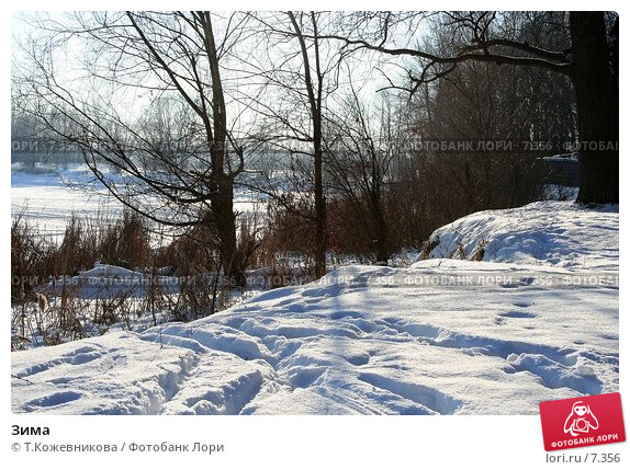 Зима, фото № 7356, снято 27 мая 2017 г. (c) Т.Кожевникова / Фотобанк Лори