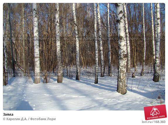 Зима, фото № 168360, снято 5 января 2008 г. (c) Карелин Д.А. / Фотобанк Лори