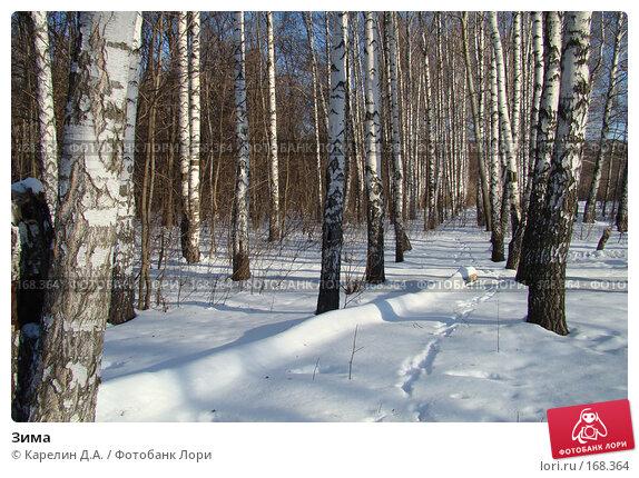 Зима, фото № 168364, снято 5 января 2008 г. (c) Карелин Д.А. / Фотобанк Лори