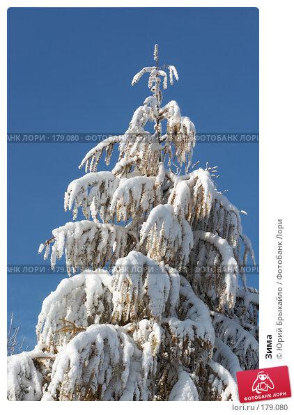 Купить «Зима», фото № 179080, снято 18 ноября 2007 г. (c) Юрий Брыкайло / Фотобанк Лори