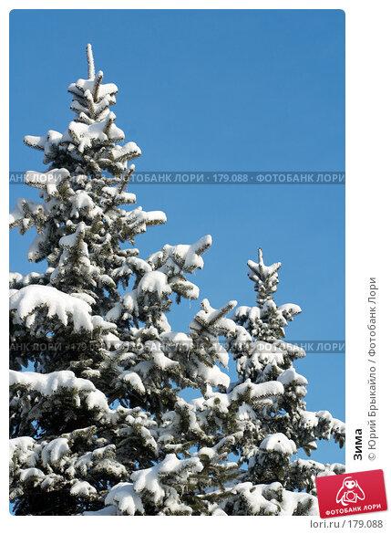 Зима, фото № 179088, снято 18 ноября 2007 г. (c) Юрий Брыкайло / Фотобанк Лори