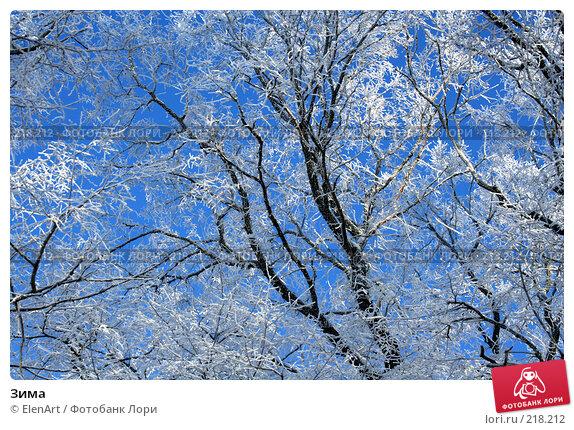 Купить «Зима», фото № 218212, снято 26 апреля 2018 г. (c) ElenArt / Фотобанк Лори