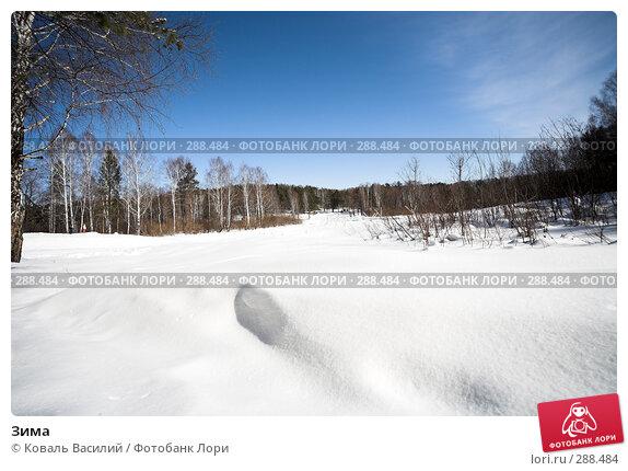 Зима, фото № 288484, снято 16 марта 2008 г. (c) Коваль Василий / Фотобанк Лори