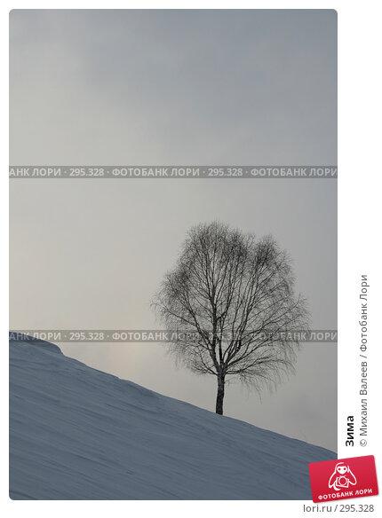 Купить «Зима», фото № 295328, снято 9 марта 2007 г. (c) Михаил Валеев / Фотобанк Лори