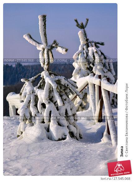 Купить «Зима», фото № 27545068, снято 1 февраля 2018 г. (c) Светлана Евланникова / Фотобанк Лори